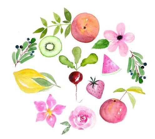 watercolor watercolour japan schirme regen sprüche zitate aquarell lena yokota-barth berriesandbuttercup portfolio illustration illustrations editorial zeitschrift colors pfirsich fruits peach obst farben stationery gift wrapping greeting cards pattern design